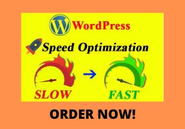 I will do wordpress website speed optimization, increase gtmetrix page speed