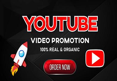 I will do guarantee Organic Youtube Promotion Vedio