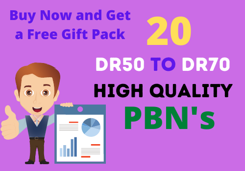 20 High Quality PBN's backlinks having DR50 to DR70 with a free gift pack