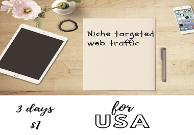 Niche Targeted Real Web Traffic for USA