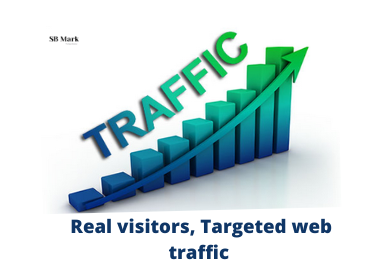 I will provide real visitors,  targeted web traffic