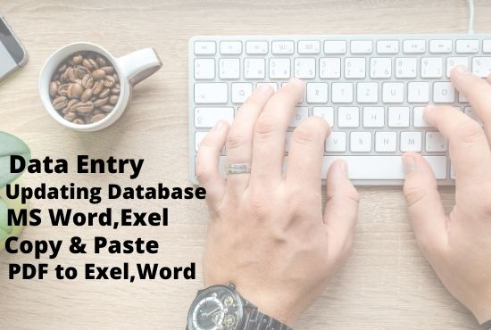 I will do accurate data entry, update data base and copy paste job