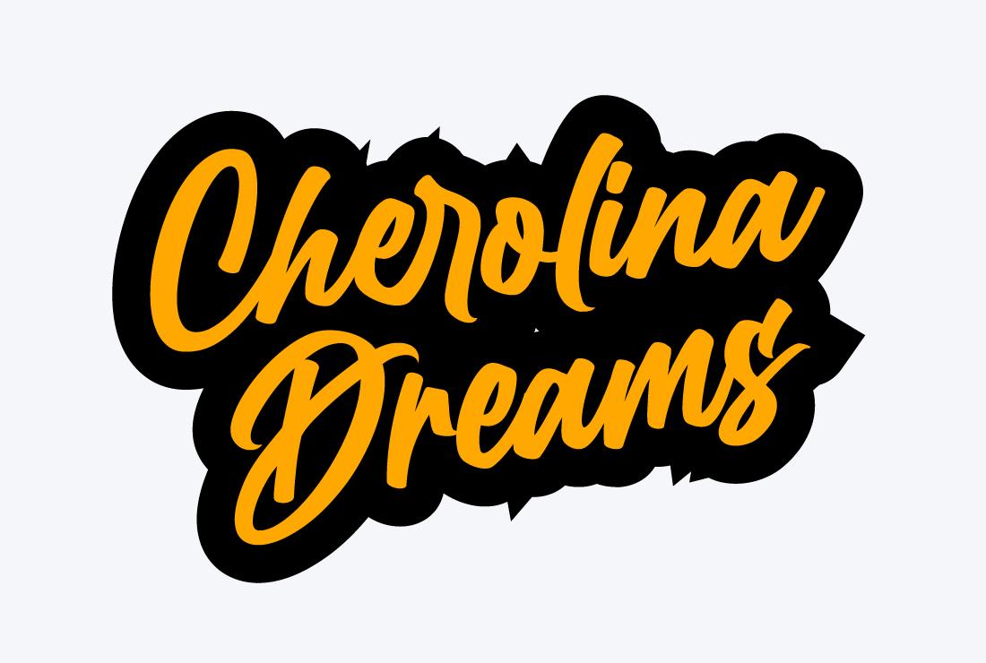 I will create handwritten typography signature logo design