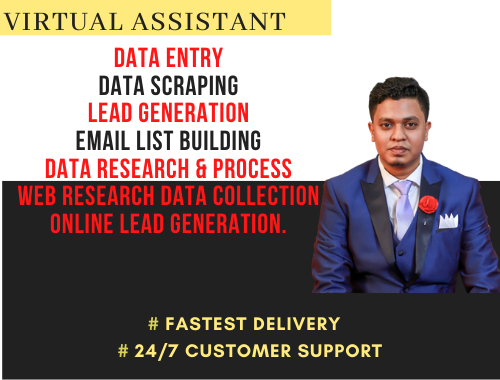virtual assistant for data entry,  data mining,  copy paste,  web research,  lead collection