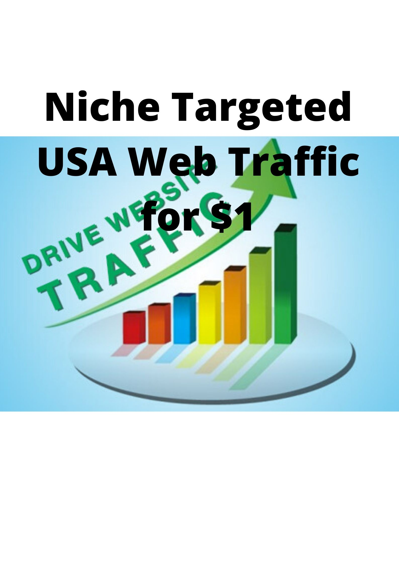 Niche Targeted USA Web Traffic Within Committed Time Period