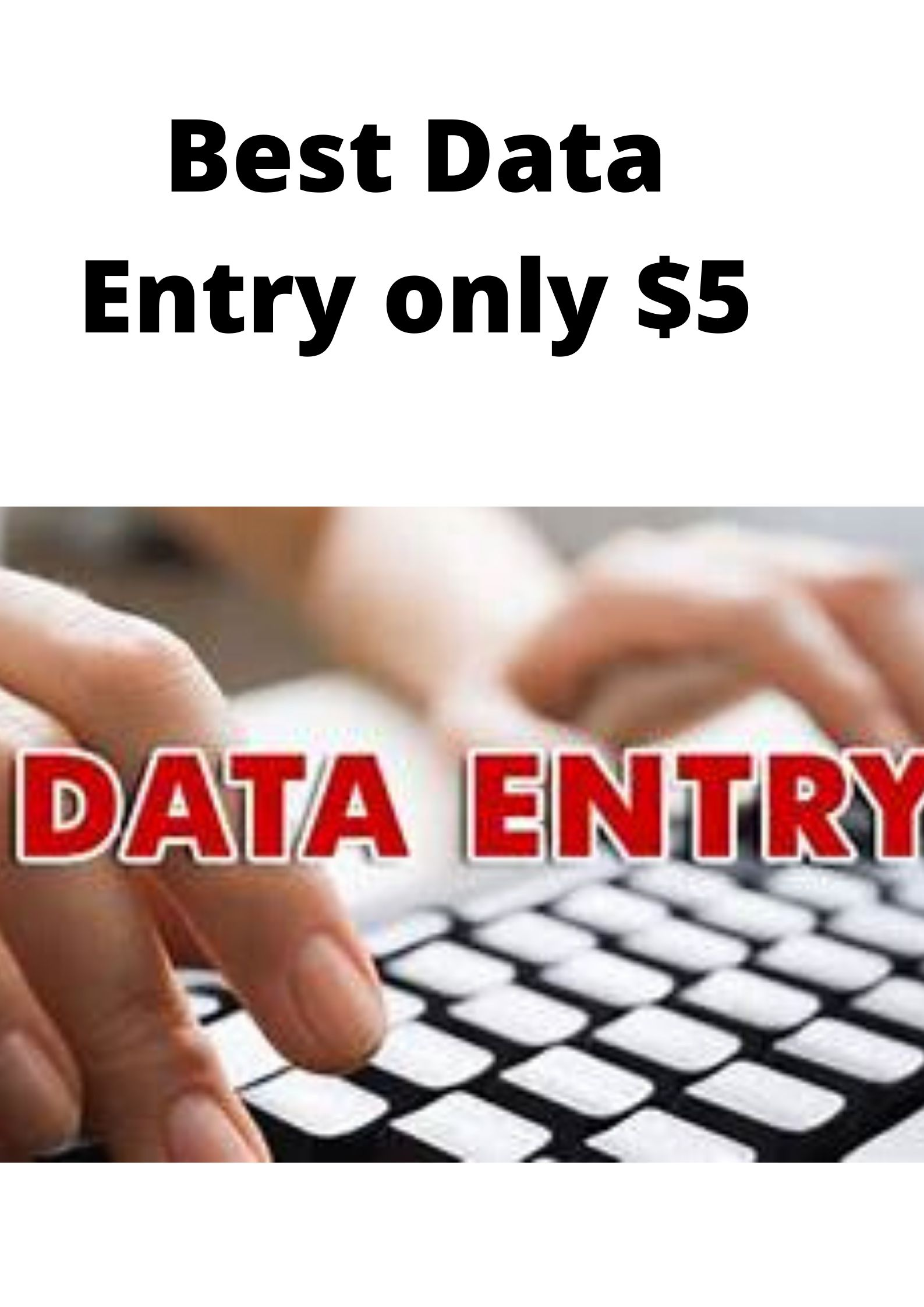 Best Data Entry & Typing for your Buissness I will professionally do excel data entry,  typing,  copy
