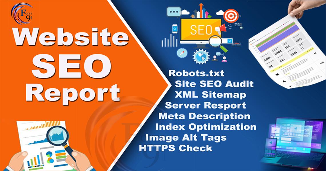 i will provide expert website SEO audit report any kind of website