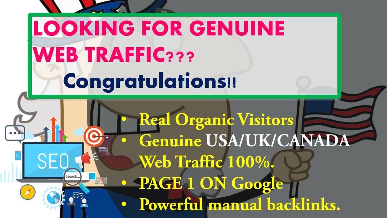 I will drive Genuine USA based web Trafic.
