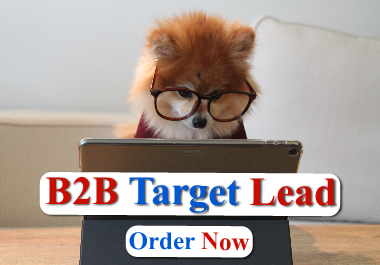 I will do LinkedIn b2b lead generation and verified email lists
