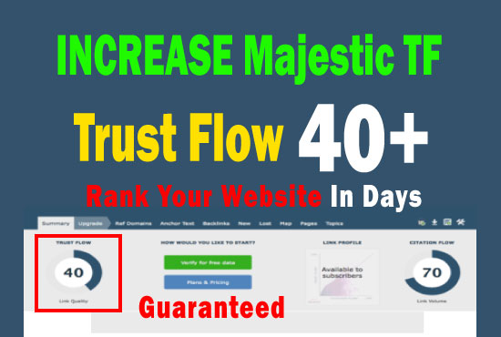 increase majestic TF 35 plus with manual high trust flow backlinks