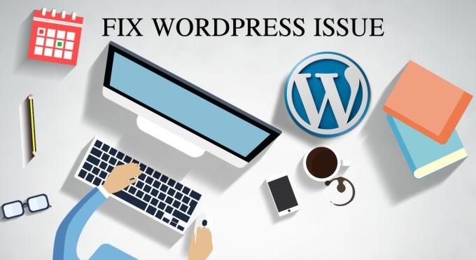 I will fix 3 small wordpress issues or wordpress errors