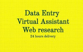 I will do data entry,  copy and pasting,  and internet research