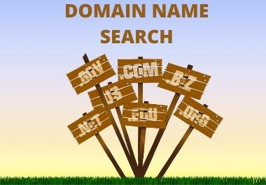 Domain name search professionaly