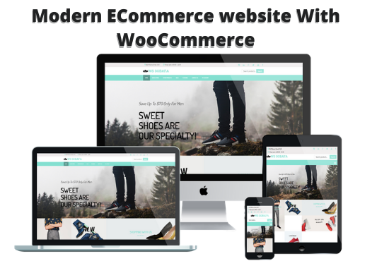 I will Build WordPress Ecommerce Store With WooCommerce, Customize WooCommerece