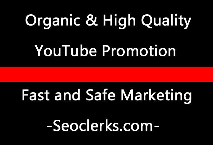 Fast YouTube video promotion Through social media marketing