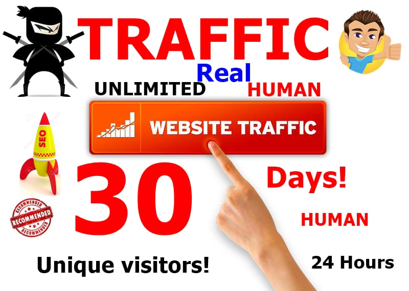 Drive Real UNLIMITED Organic Web Traffic To Website for 30 days