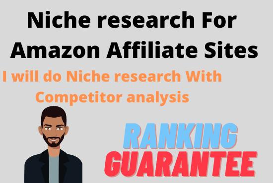 I will do Amazon micro niche research for affiliate site