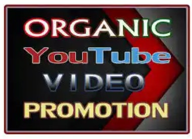 I will do organic youtube promotion of your video very fast