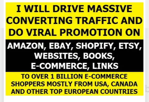 I will drive real human traffic with proof to ecommerce, website promotion for 1