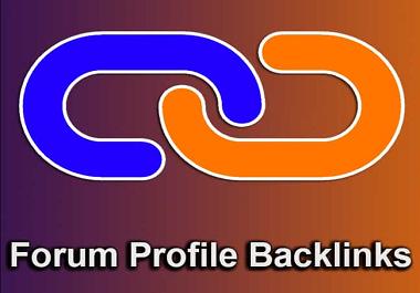 I will do 30 high domain authority SEO profile backlinks