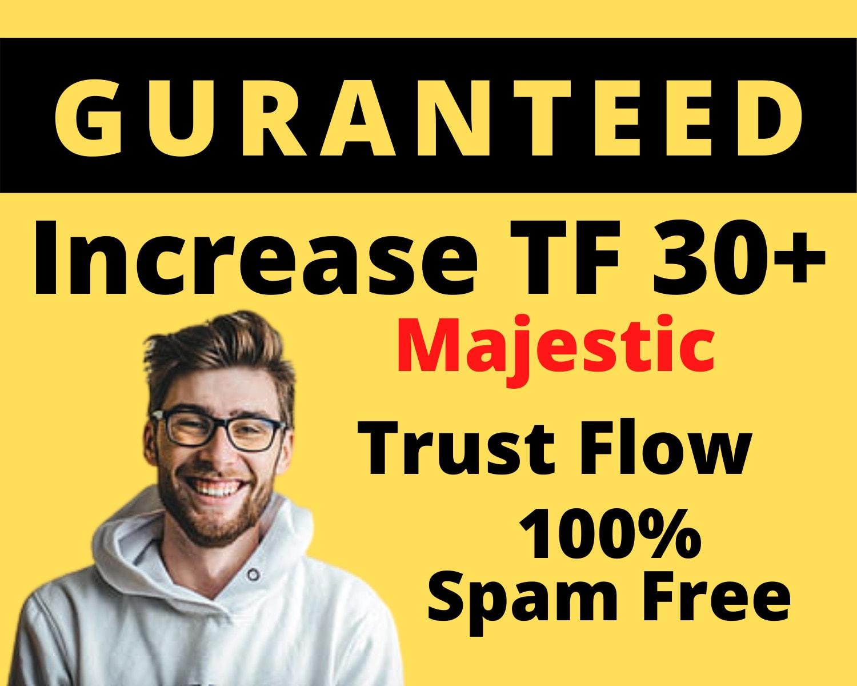 I will increase tf majestic trust flow 30+ guaranteed