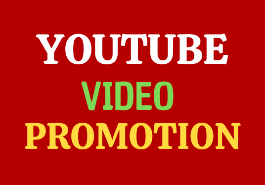 I Will Provide Organic YouTube Video And High quality Social Media Promotion