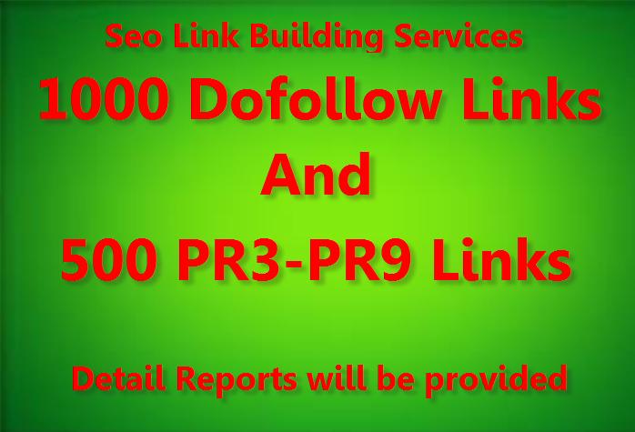 Diversify Link Building Services - Get 1000 Do Follow and 500Pr3 to Pr9 Backlinks