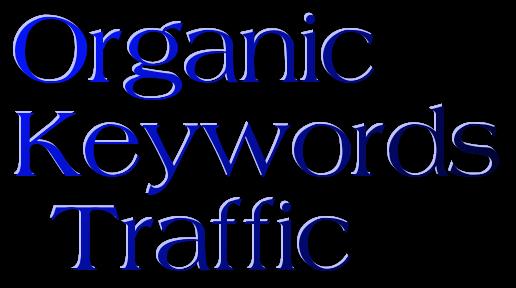 Organic Keywords Traffic BY Social media marketing Visitors To Your Web Site Web Traffic