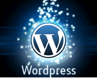 I will design your word press website and e-commerce store