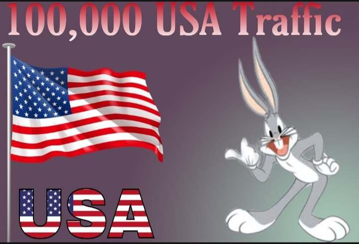 i will send 100,000 USA Target Traffic