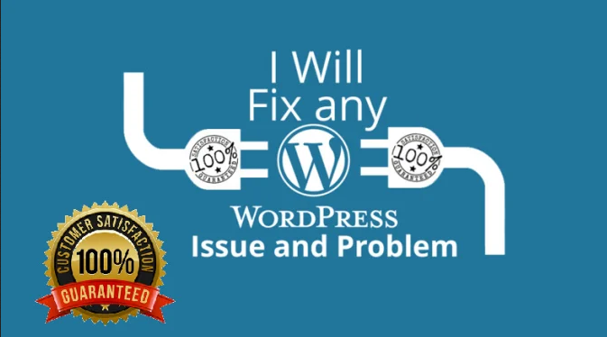 I will fix any issues or error of wordpress website fast