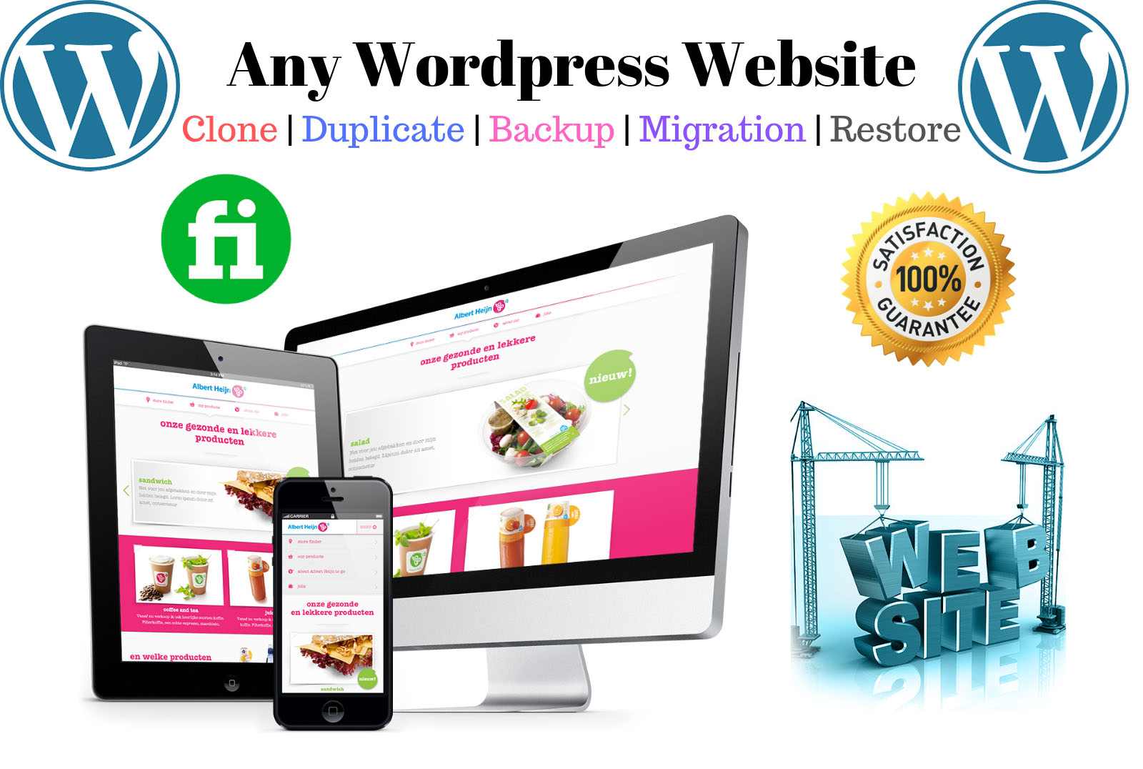 I will do any website clone migration backup