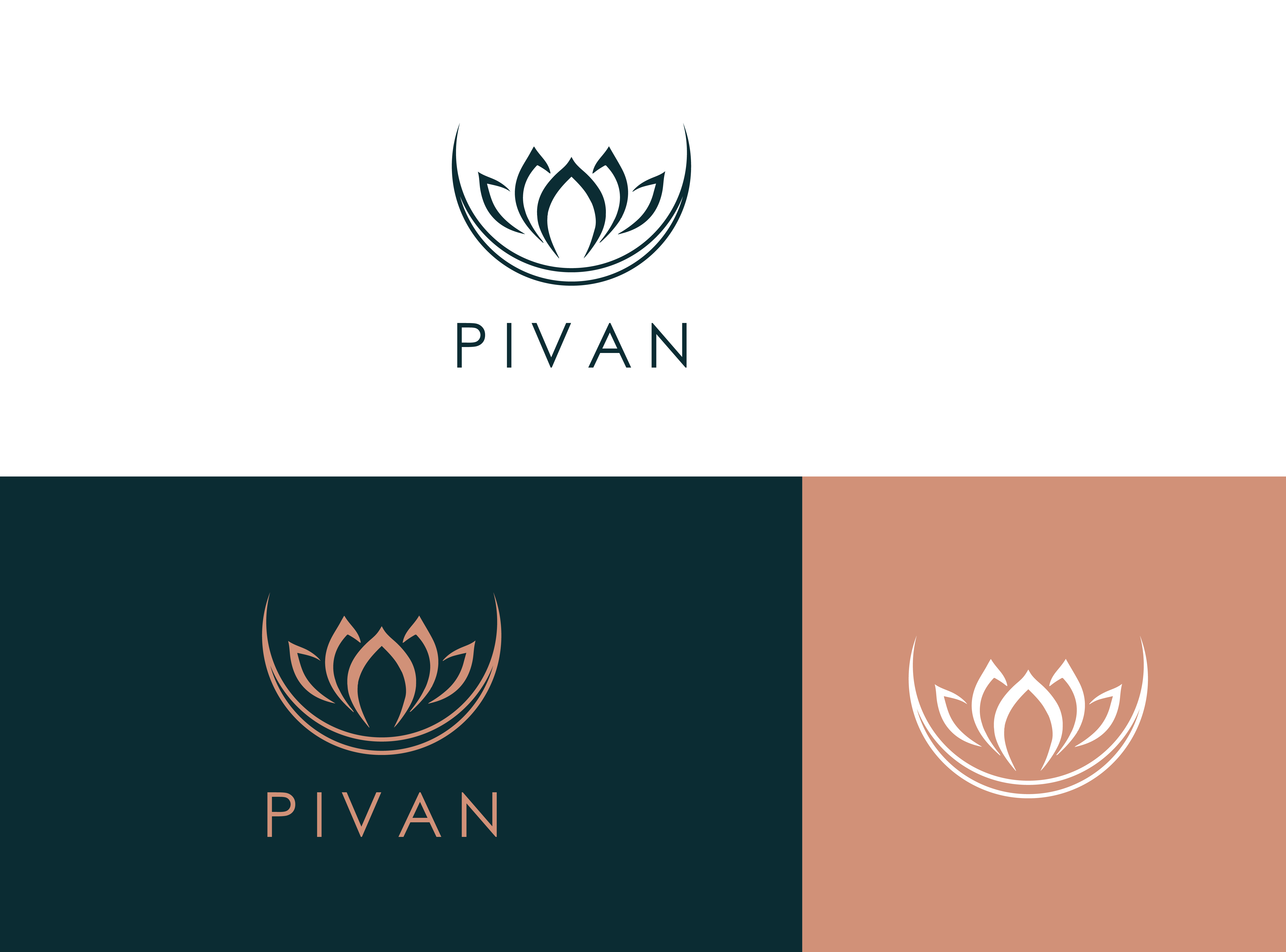 I will design professional logo design within 12 hours