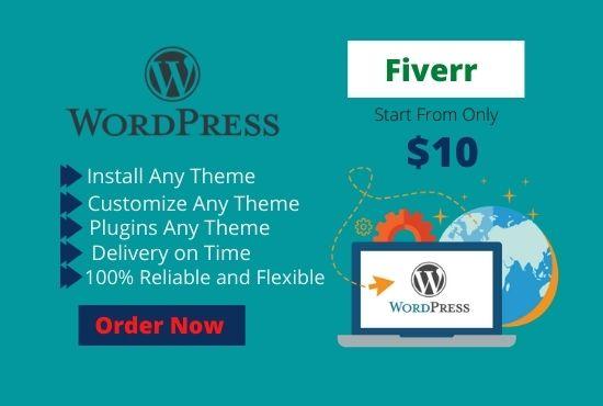 I will do wordpress theme, plugins installation and customization