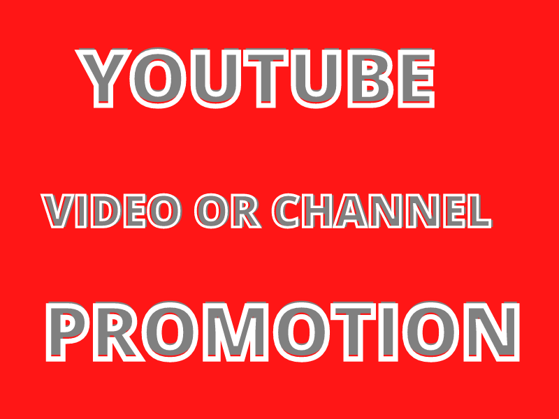 I will Provide You Great Youtube Video Promotion