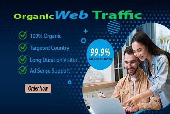 I will drive targeted real organic USA web traffic google ranking