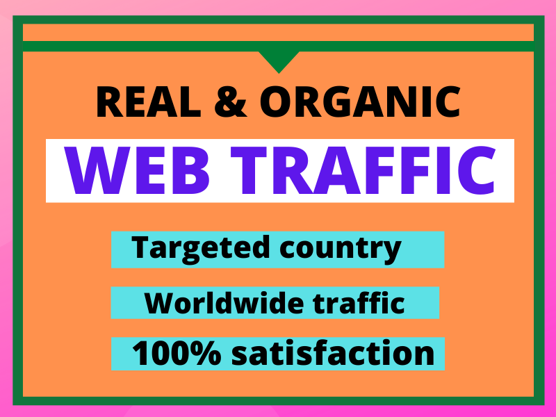 I will drive you real & organic web traffic