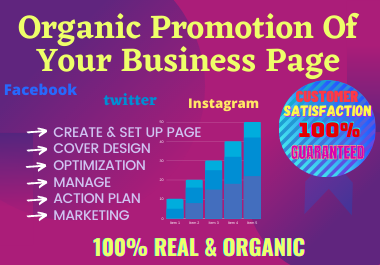 I will set up,  Manage and optimize your facebook Business Page by organic traffic