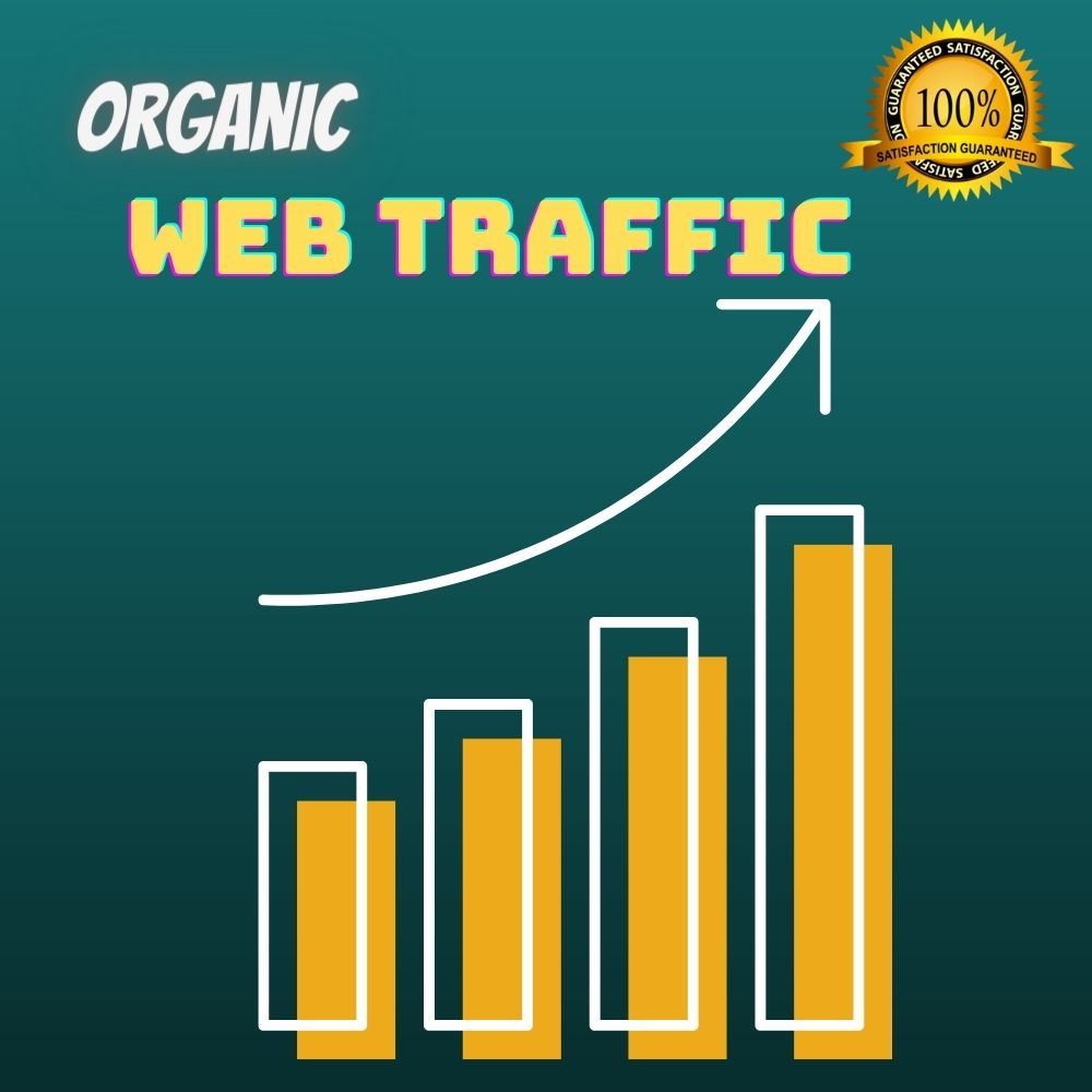 I will bring real and active web traffic from your targeted country