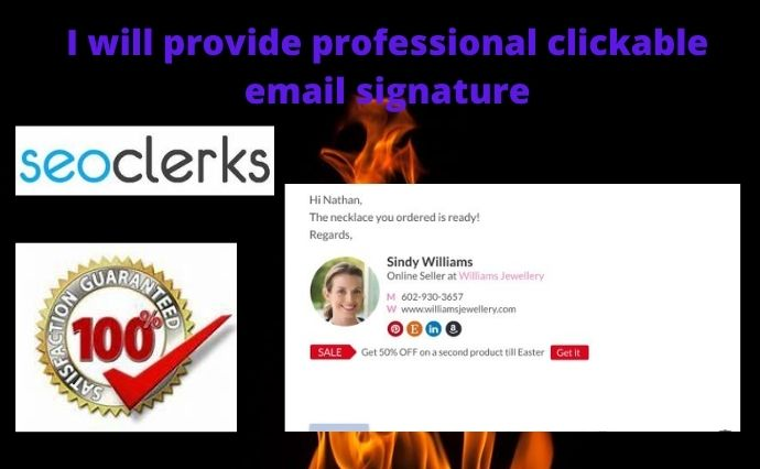 I will provide a professional Clickable Email Signature
