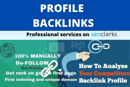 I will do 20+ permanent profile backlinks manually