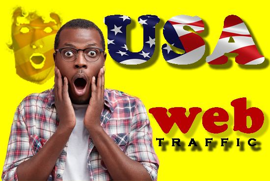 USA send reall 500 000 web traffic visitors in your web site