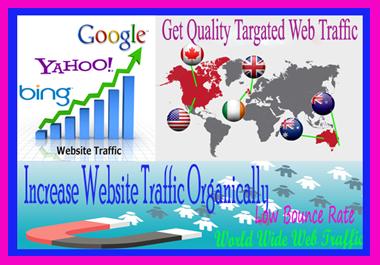I will Provide real organic web traffic
