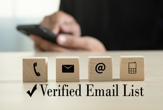 i will provide you niche based verified email list