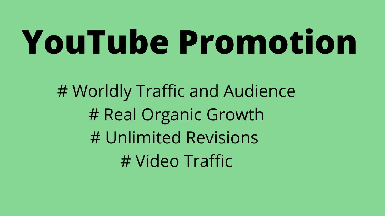 I will do organic you tube promotion and viral