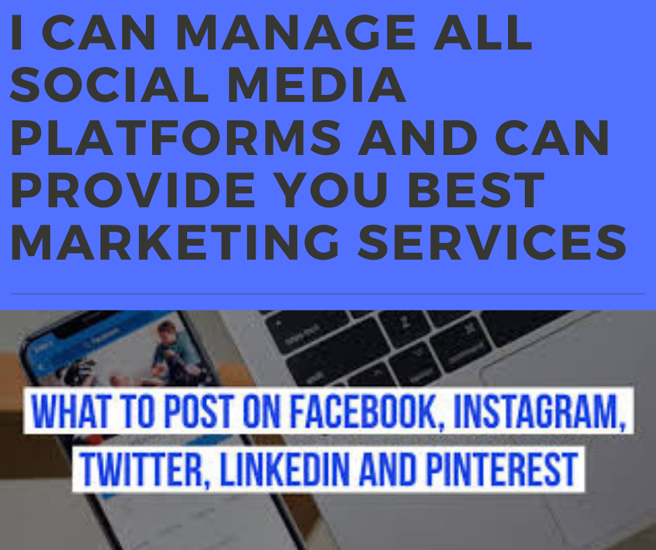 I can make websites, e store and can provide you social media marketing services