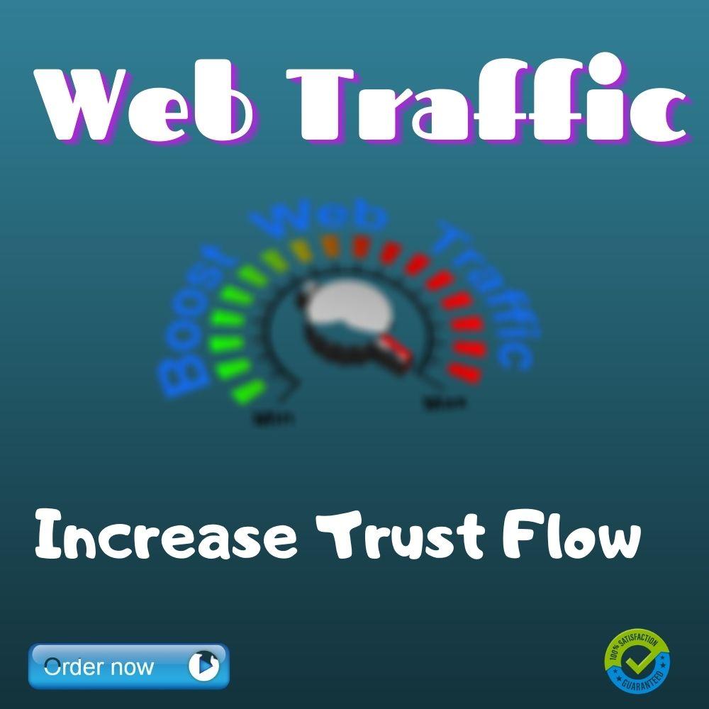 I will drive real organic web traffic