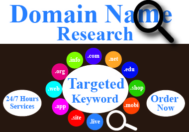 I Will Do Targeted Domain Name Research