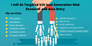I will do targeted b2b lead generation web research and data entry