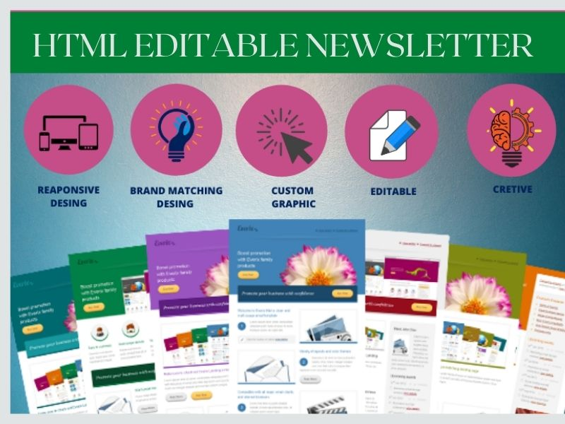 I will design a professional HTML email newsletter or template